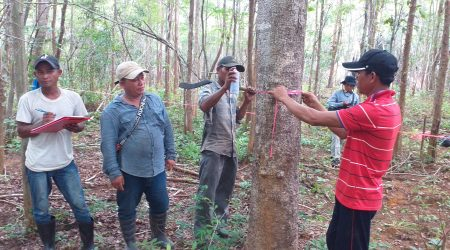 Conduct CPA inventory at Anlongchrey village (4)
