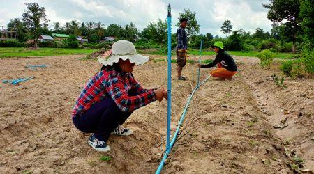 Drip installation at Katot village (2)