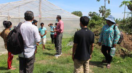 ED visit vegetable member at Smakoh village (2)